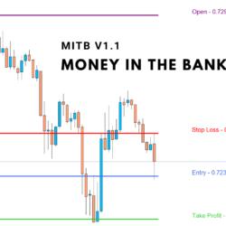 MITB 1.1 Indicator